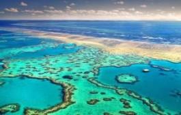 Австралия: Большой Барьерный риф под угрозой гибели