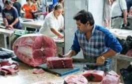 Лиссабон открывает рыбный сезон