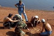В Кировской области разработан палеонтологический маршрут