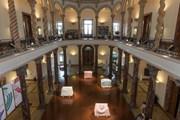В музеи Женевы - по единому билету