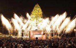 Установлена самая высокая новогодняя ель в мире