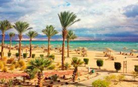 Египет возвращается: как искем?