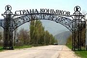 В Крыму разработаны винные маршруты