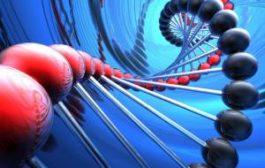 Ученые выяснят, заложена ли страсть к путешествиям в генах