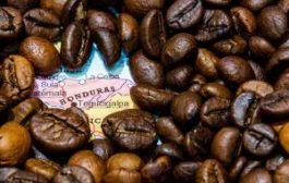 Для любителей кофе создан идеальный туристический маршрут