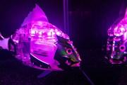 В Москве появился аквариум с рыбами-роботами