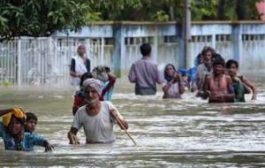 Индия пережила сильнейшее наводнение за последние 100 лет
