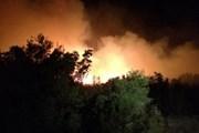 Лесные пожары в Черногории не угрожают российским туристам