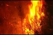 Огонь лесных пожаров подобрался к португальскому курорту
