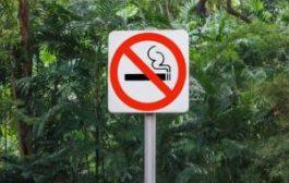 На Пхукете будут не рады тем, кто много курит