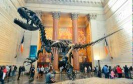 Все музеи США станут бесплатными