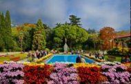 На ялтинском балу ждут Белоснежку, Крымскую ромашку и Розовые сумерки