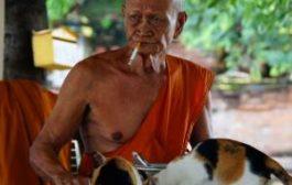 Таиланд продолжает бороться с курильщиками. Новые запреты