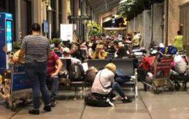 Туристы «Жемчужной реки» могут вернуться домой во вторник, 11 декабря
