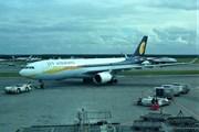 Jet Airways обанкротилась и остановила полеты