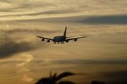 Авиакомпании сокращают рейсы из-за резкого падения спроса ввиду эпидемии